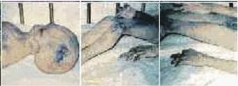Spodní obrázky jsou snímky těl ze srážky u Roswellu.