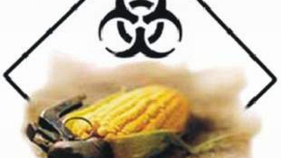 226. Deset základních důvodů proč říct NE společnosti Monsanto