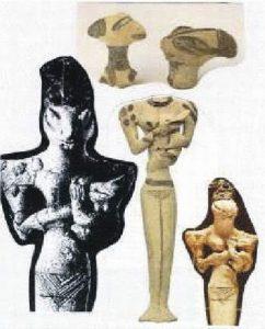 13) sošky plazov z Iraku